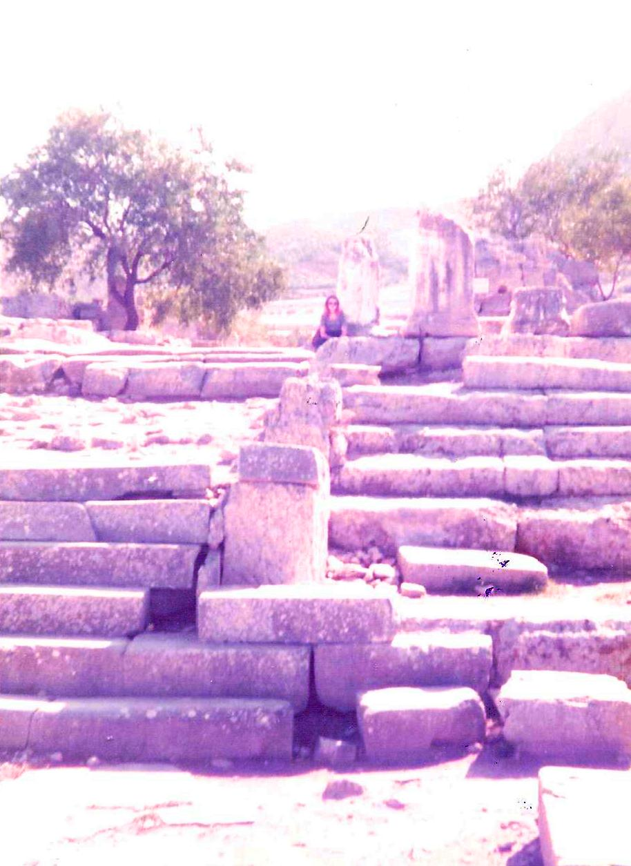 its all greek to me a tale of a mad dog and an englishman ruins retsina and real greeks