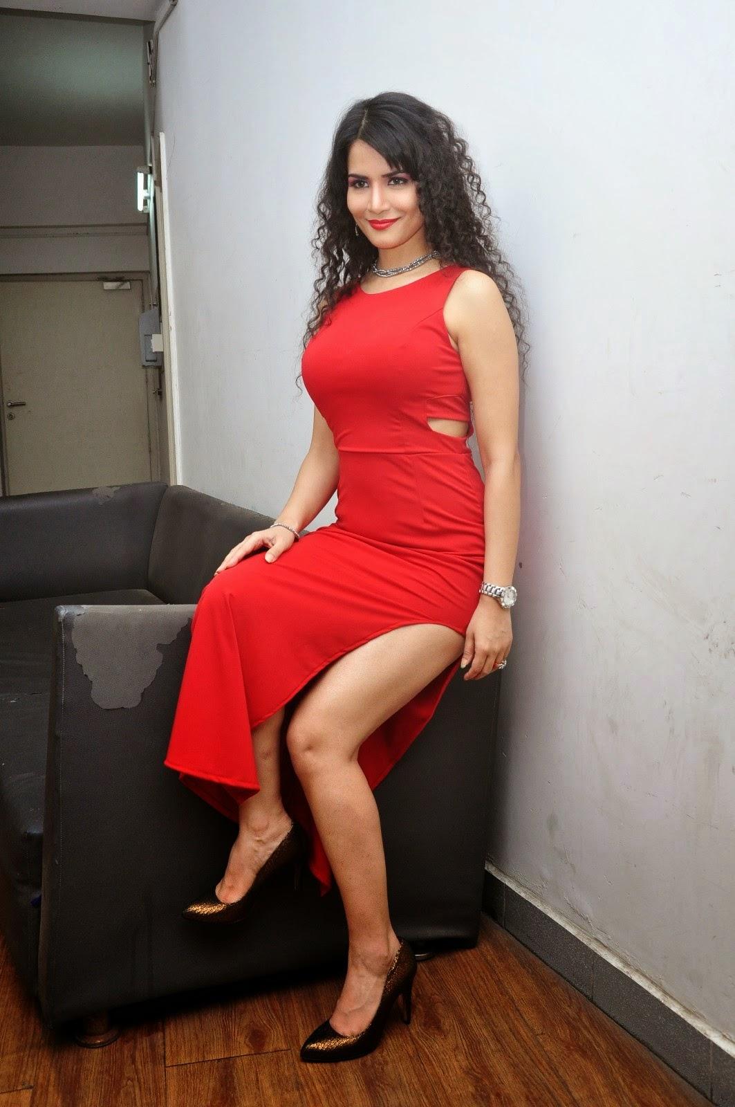 Ritu Sachdev at Boom Boom Movie Audio Launch Photos