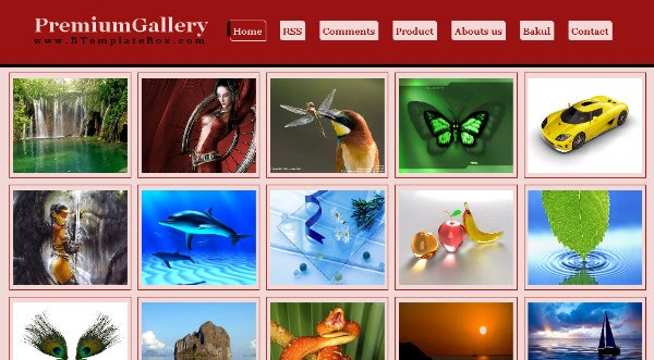 Premium Blogspot Gallery Theme