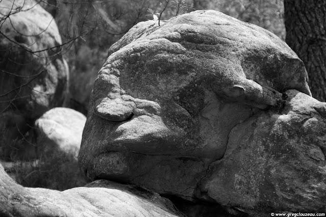Esprit de la forêt, Potala, Trois Pignons, (C) 2014 Greg Clouzeau