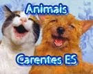 Blog Animais Carentes ES