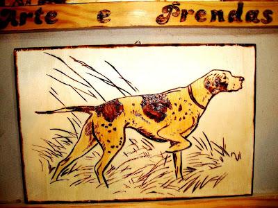 cão de caça - perdigueiro