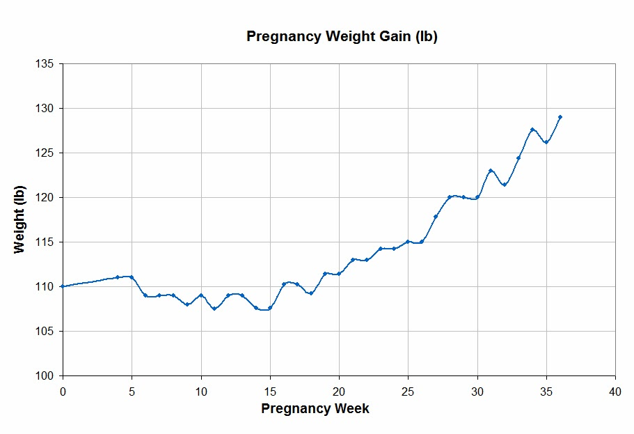 Pieces Of Anna Pregnancy And Weight Gain