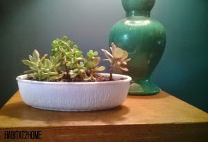 Long White Glass Dish Made Into a Planter