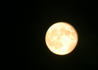 Not the best moon pic ever, but it isn't bad