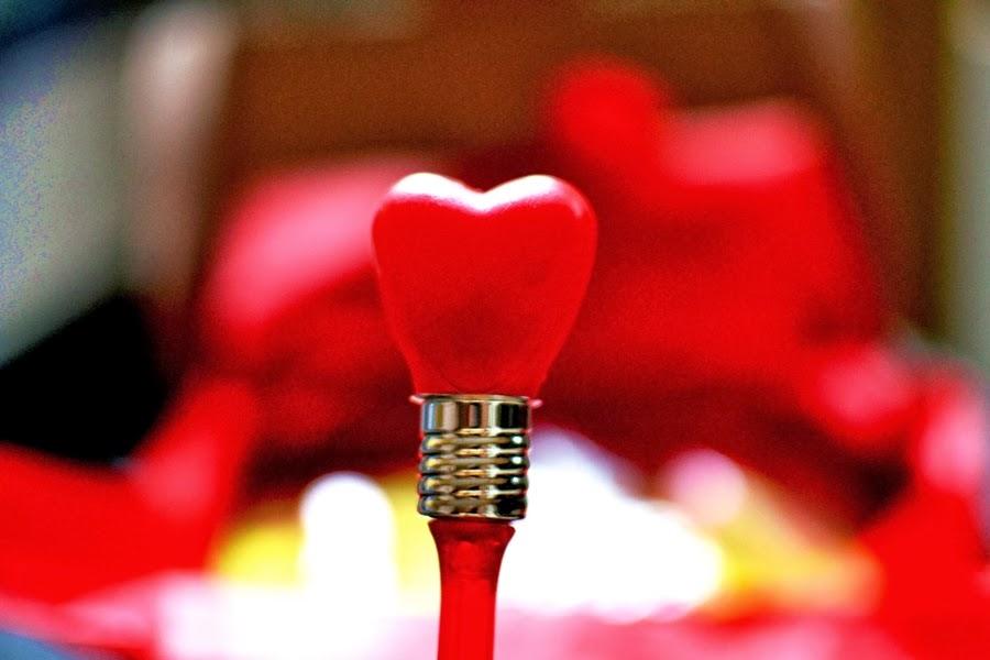 heart valentines day valentinstag love liebe herz heart
