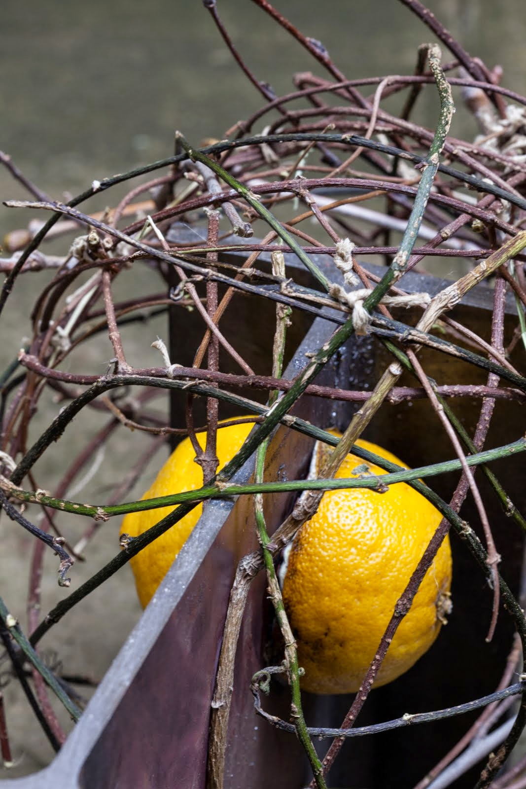 sticks, steel, and a lemon