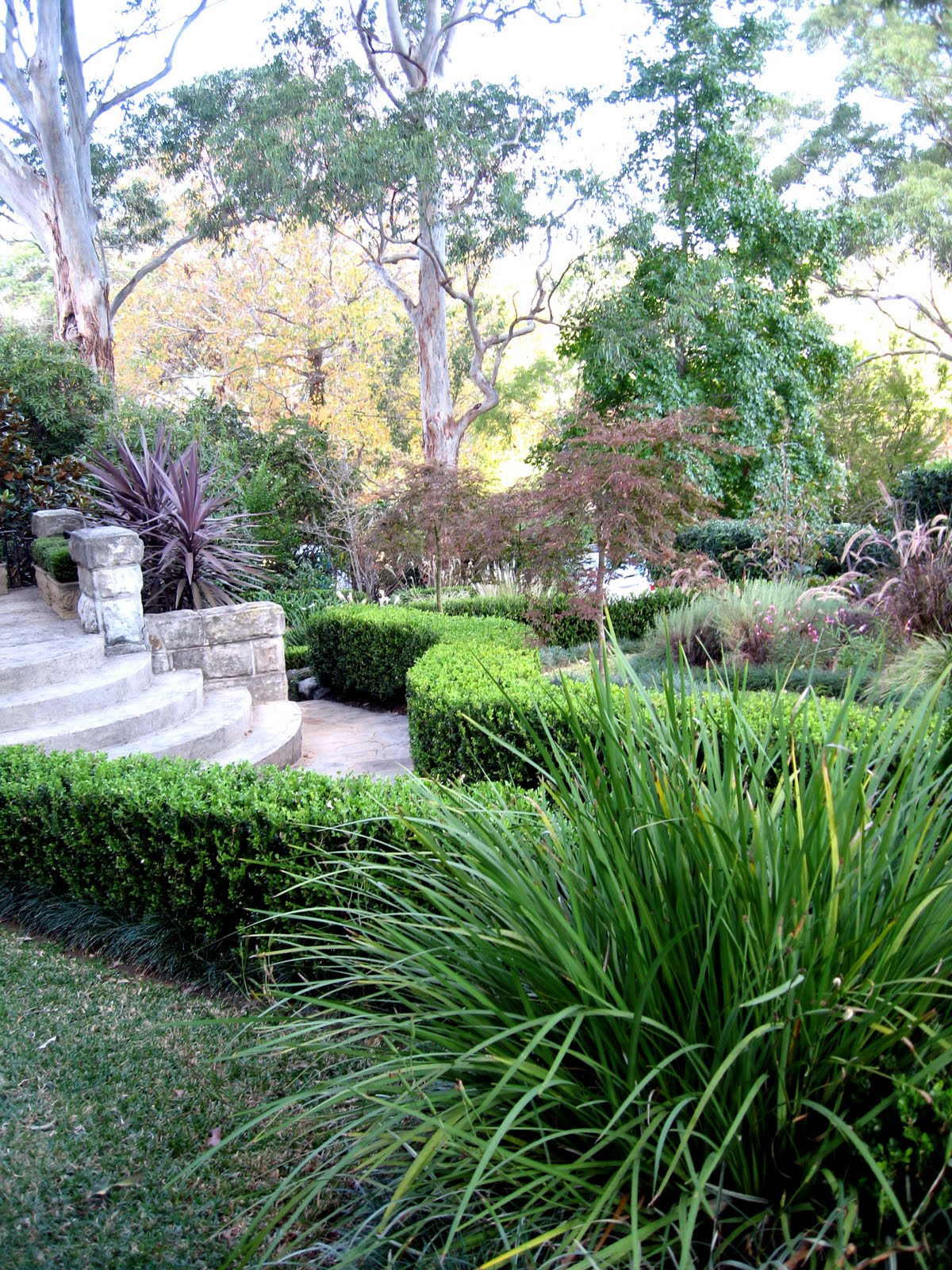 Living Colour Landscapes Garden Design Ideas Diary