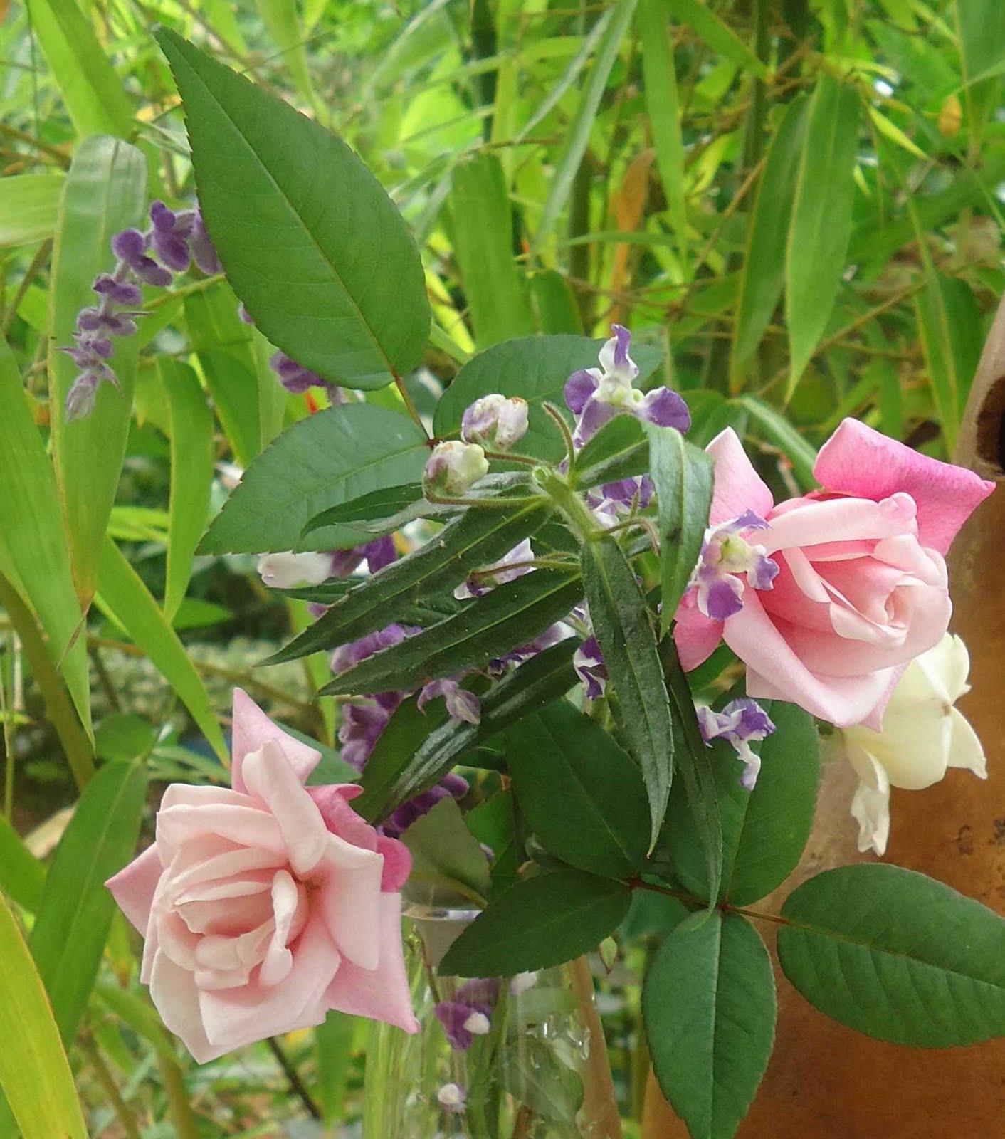 Fryou maison d cos au jardin des roses et des fleurs for Fleurs thes au jardin