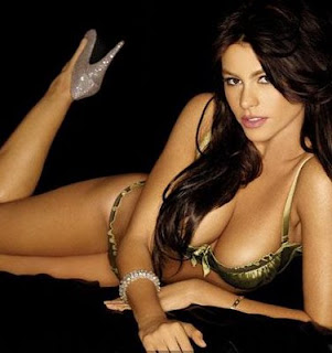 sofia vergara hot hollywood celebrity