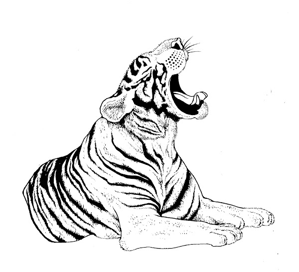 Lincoln Park Zoo Coloring Page