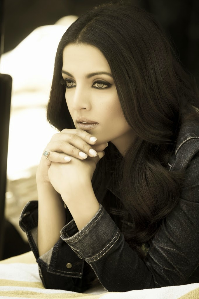 Celina Jaitly HD Wallpapers Free Download
