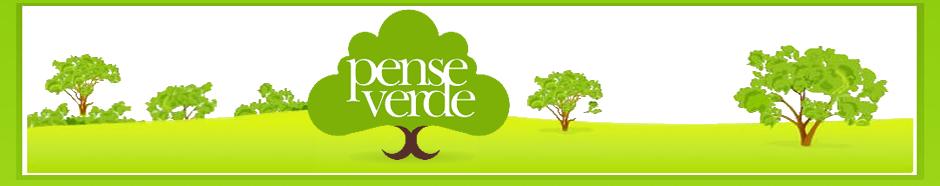 Blog Pense Verde - RBS TV Santa Maria - Sustentabilidade, Arte e Reciclagem