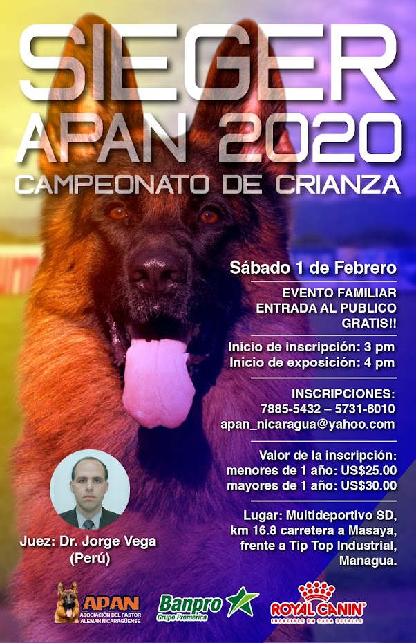 Asociacion del Pastor Alemán Nicaragüense - APAN