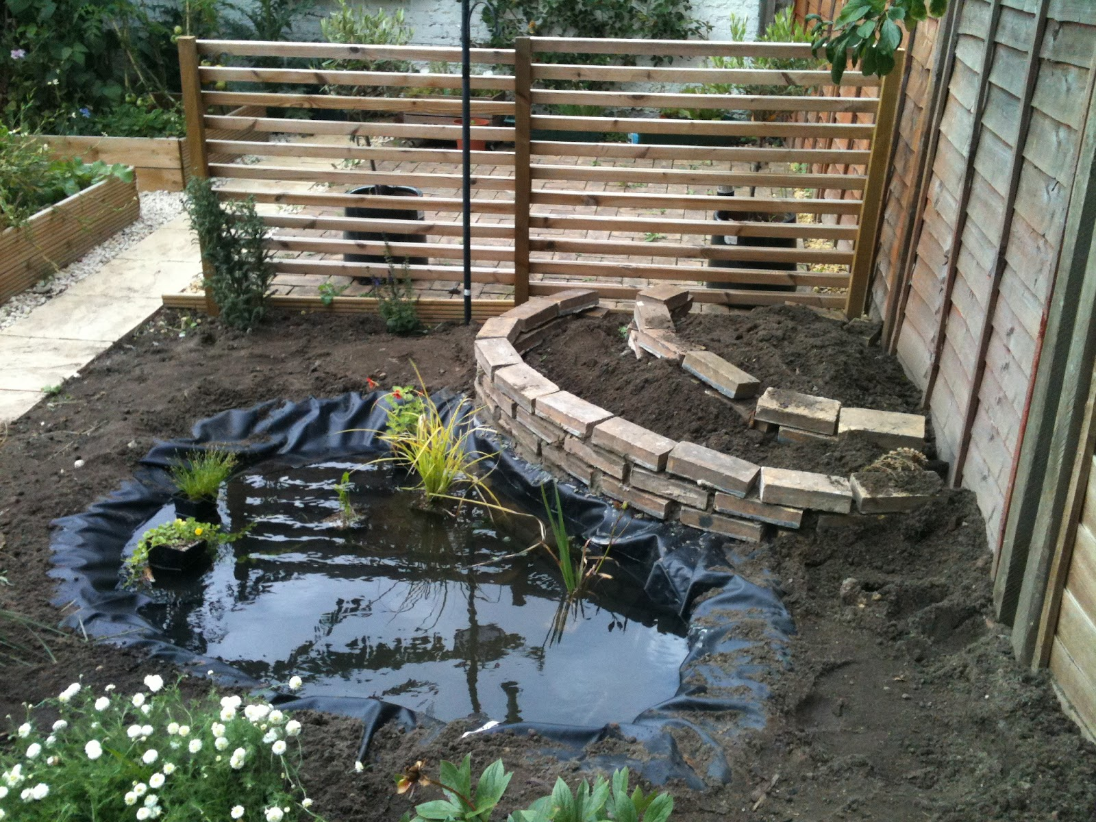 Home garden ponds interior design and deco for Fish pond layout