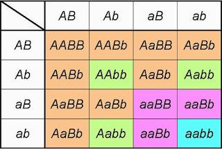 Biologia gregor mendel