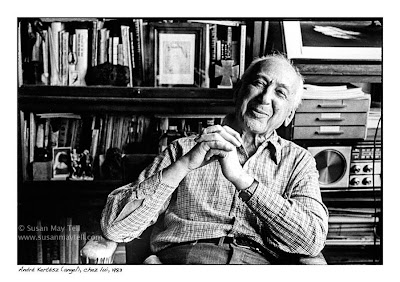 andre kertesz photo essay André kertész (2 july 1894 – 28 september 1985), born kertész andor, was a hungarian-born photographer known for his groundbreaking contributions to.