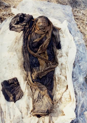 16th-Century Korean Mummy Provides Clue to Hepatitis B Virus Genetic Code