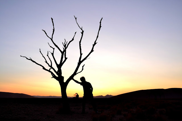 Silhouette of tree and man in Sossusvlei