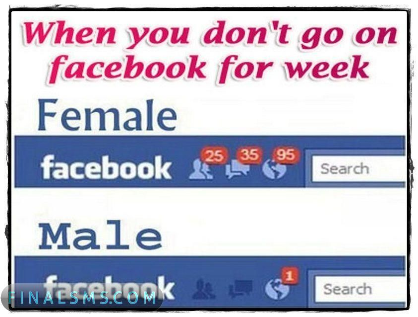 Facebook Funny Wallpapers Pictures