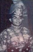 Sultan Azmy Perkasa Alam Alhaj