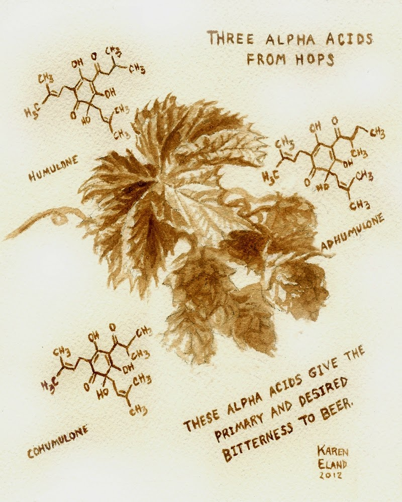 29-Hops-Chemistry-Karen Eland-Vintage-Looking-Beer-and-Water-Paintings-www-designstack-co