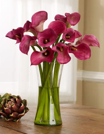 L 39 angolo della casalinga ricette veloci e facili fiori for Lilium in vaso