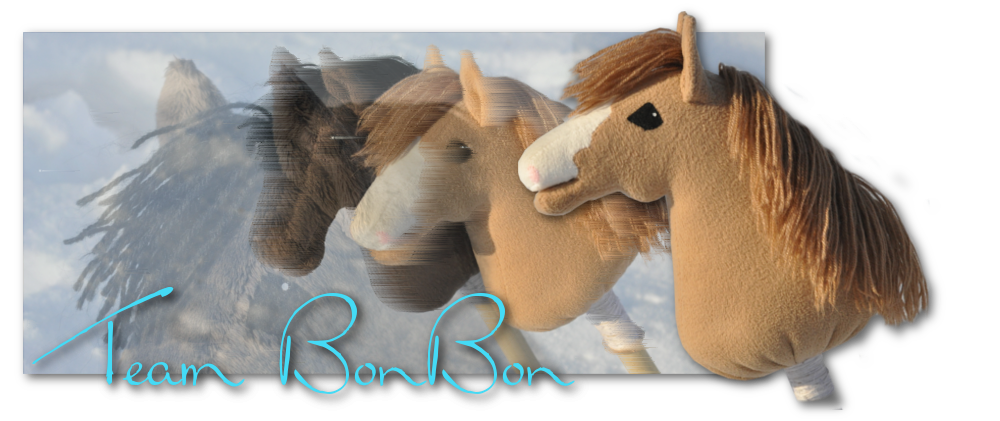 Team BonBon