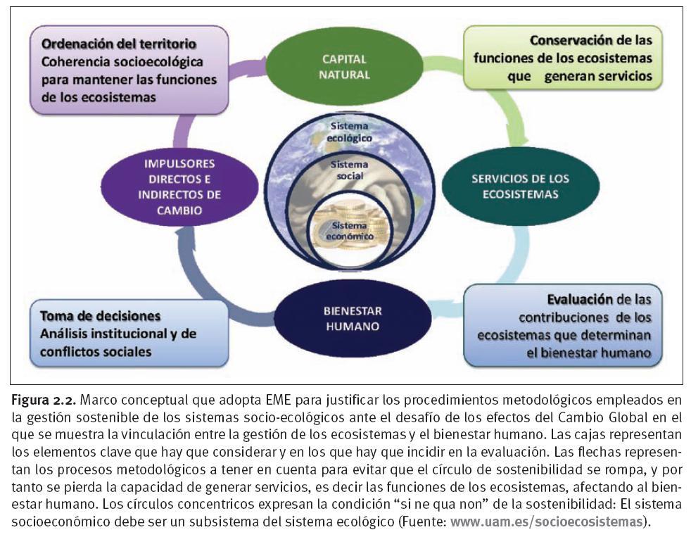 Derecho, sociedad y medio ambiente: Presentación Informe de ...