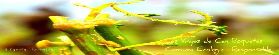 Les Vinyes de Can Roquetes