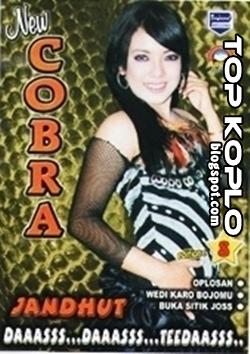New Cobra Vol 8 Full Album Oplosan terbaru dangdut koplo New Cobra Download Mp3 New Pallapa Terbaru 2014 Live In Pelemwatu