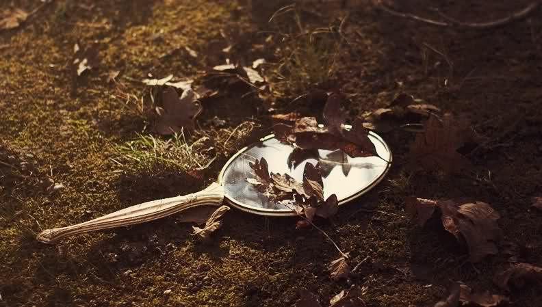 Ombre sull 39 erba lo specchio rotto - Specchio rotto sfortuna ...