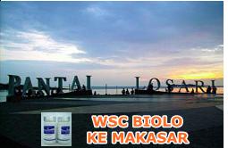 agen obat pelangsing wsc biolo makasar