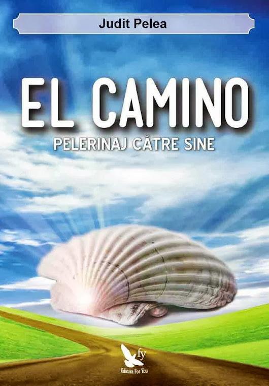 El Camino, pelerinaj catre sine
