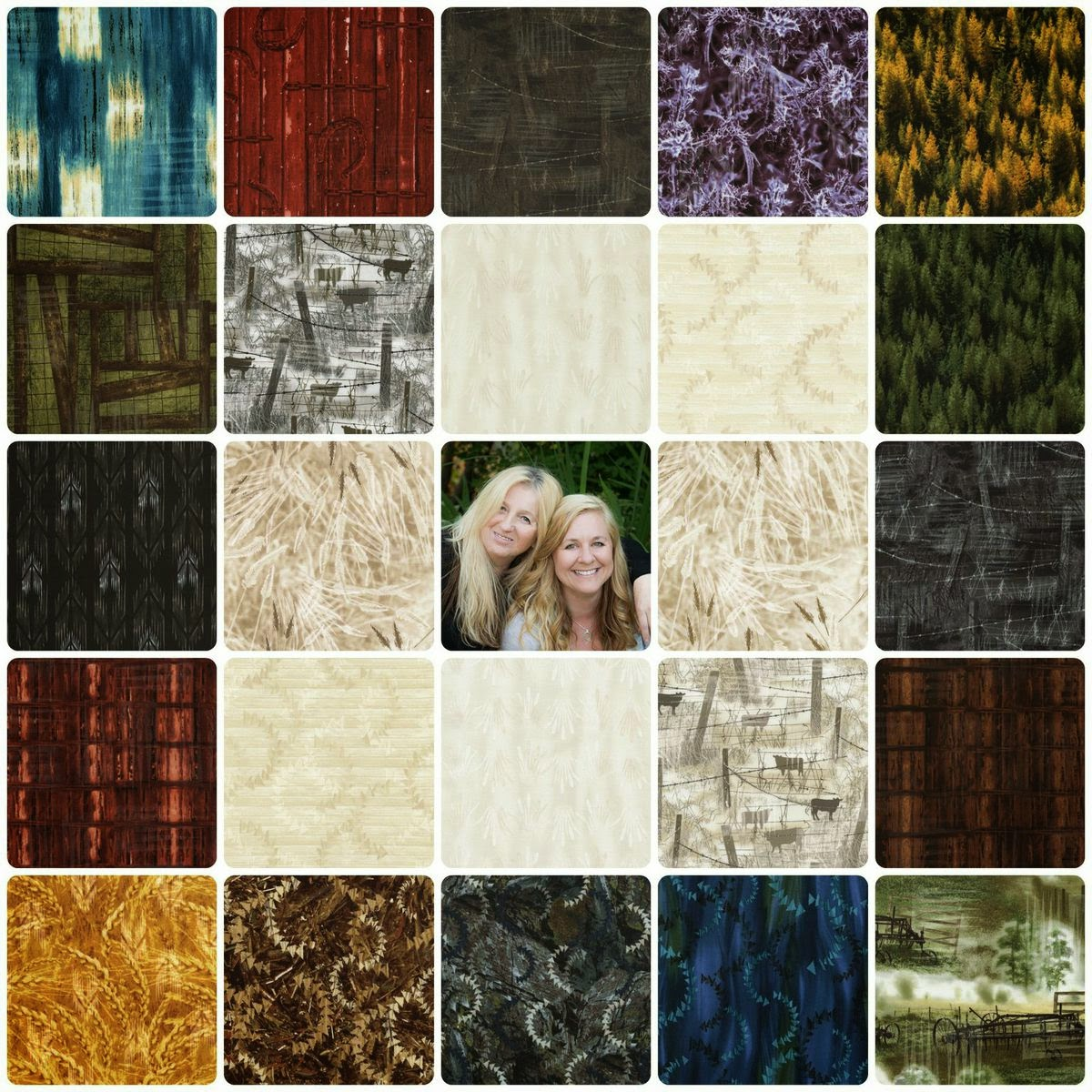 http://www.ttfabrics.com/collection/the-reclaimed-west-by-judy-judel-niemeyer/?product_count=30