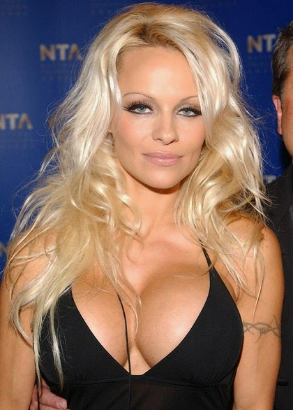 Pam Anderson's Sexy Boobs