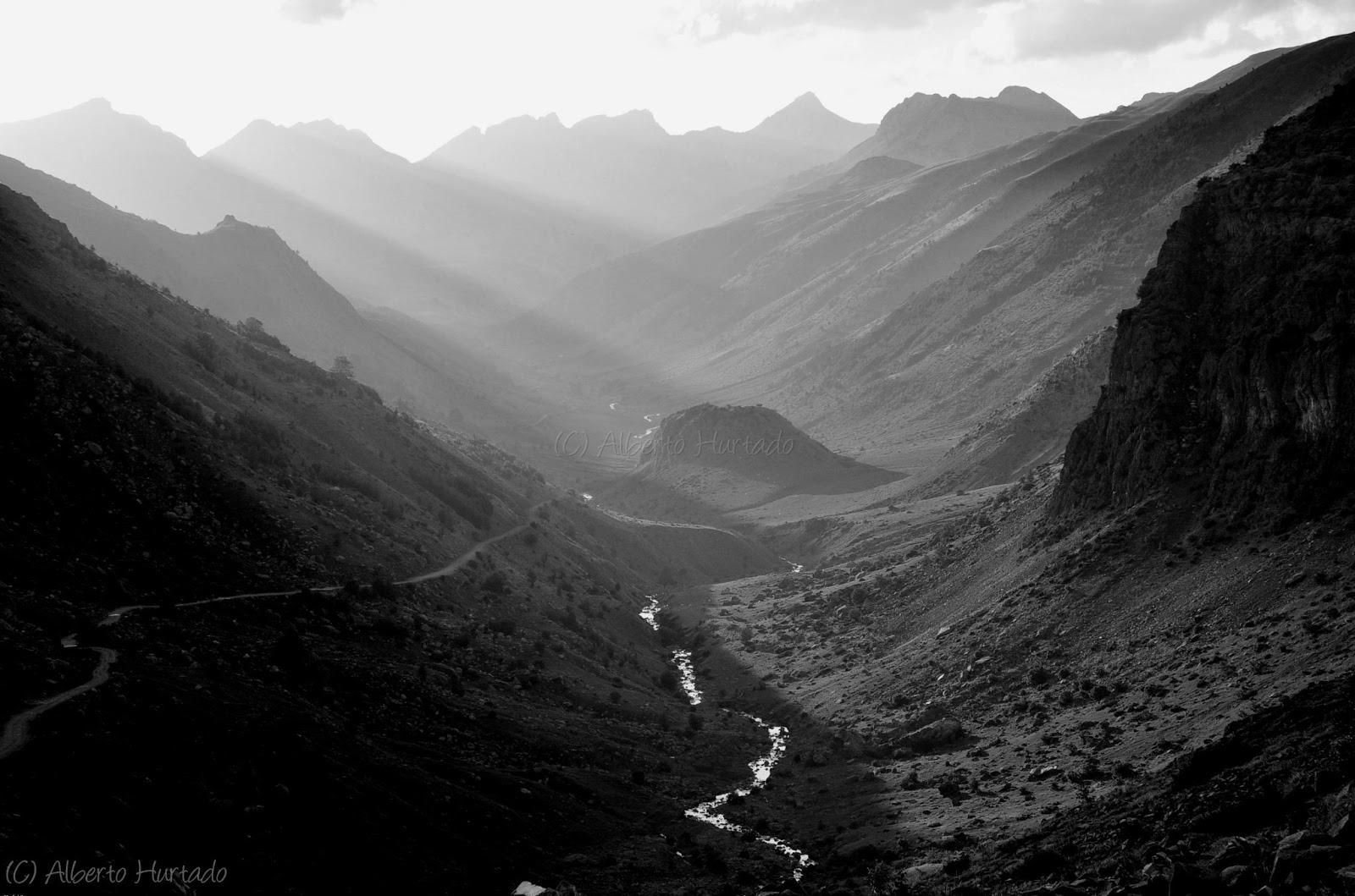 Fotograf a de naturaleza blanco y negro - Blanco y negro paint ...