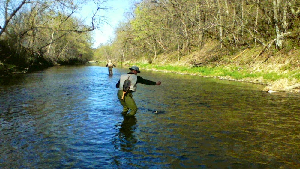 Fly fishing for brown trout on a Southeast Minnesota trout stream.