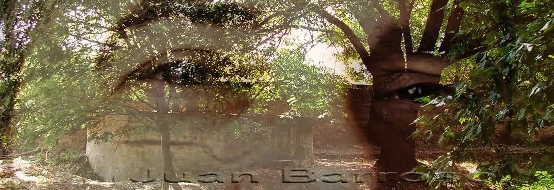 Abu Barras