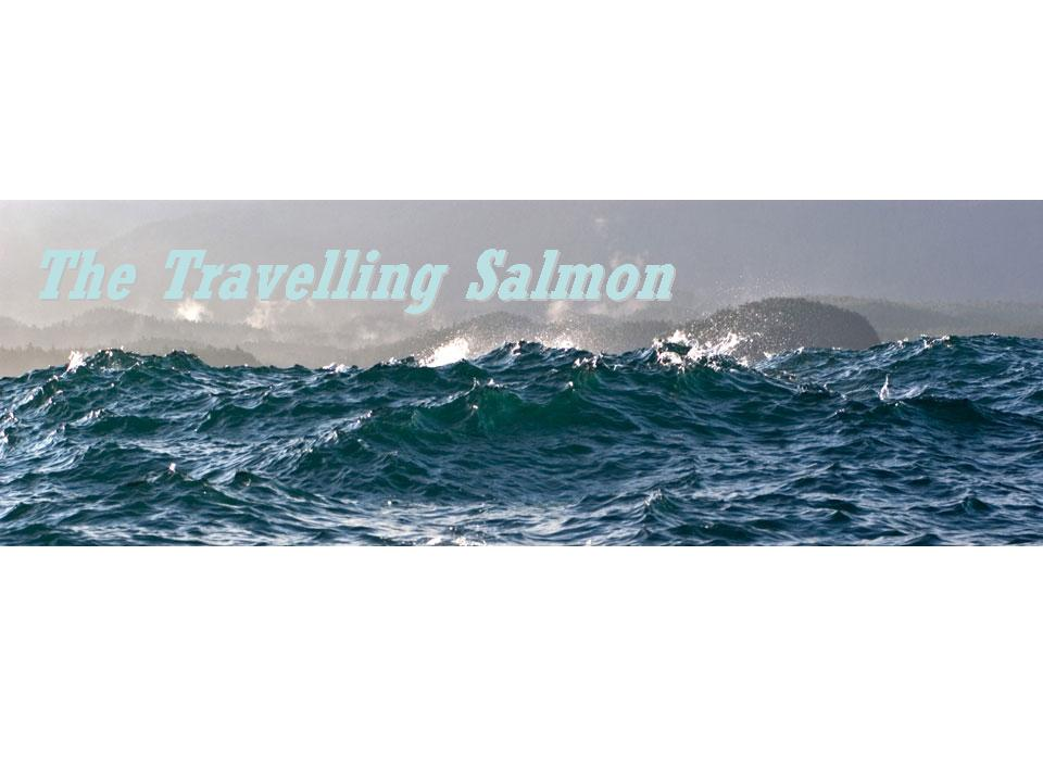 The Travelling Salmon