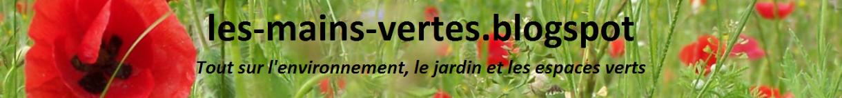 les-mains-vertes.blogspot