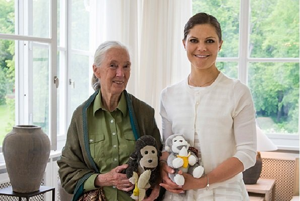 Jane Goodall visited Sweden to talk about her foundation, the Jane Goodall Institute.