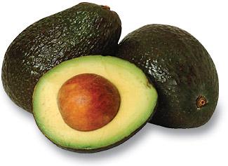 agriculture avocado avocado persea americana is a tree native to ...