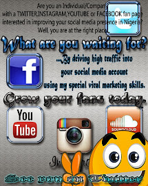 social media optimizer