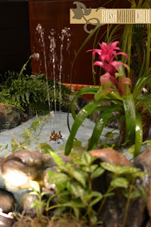 plantas paisagistícas, lago, chafariz