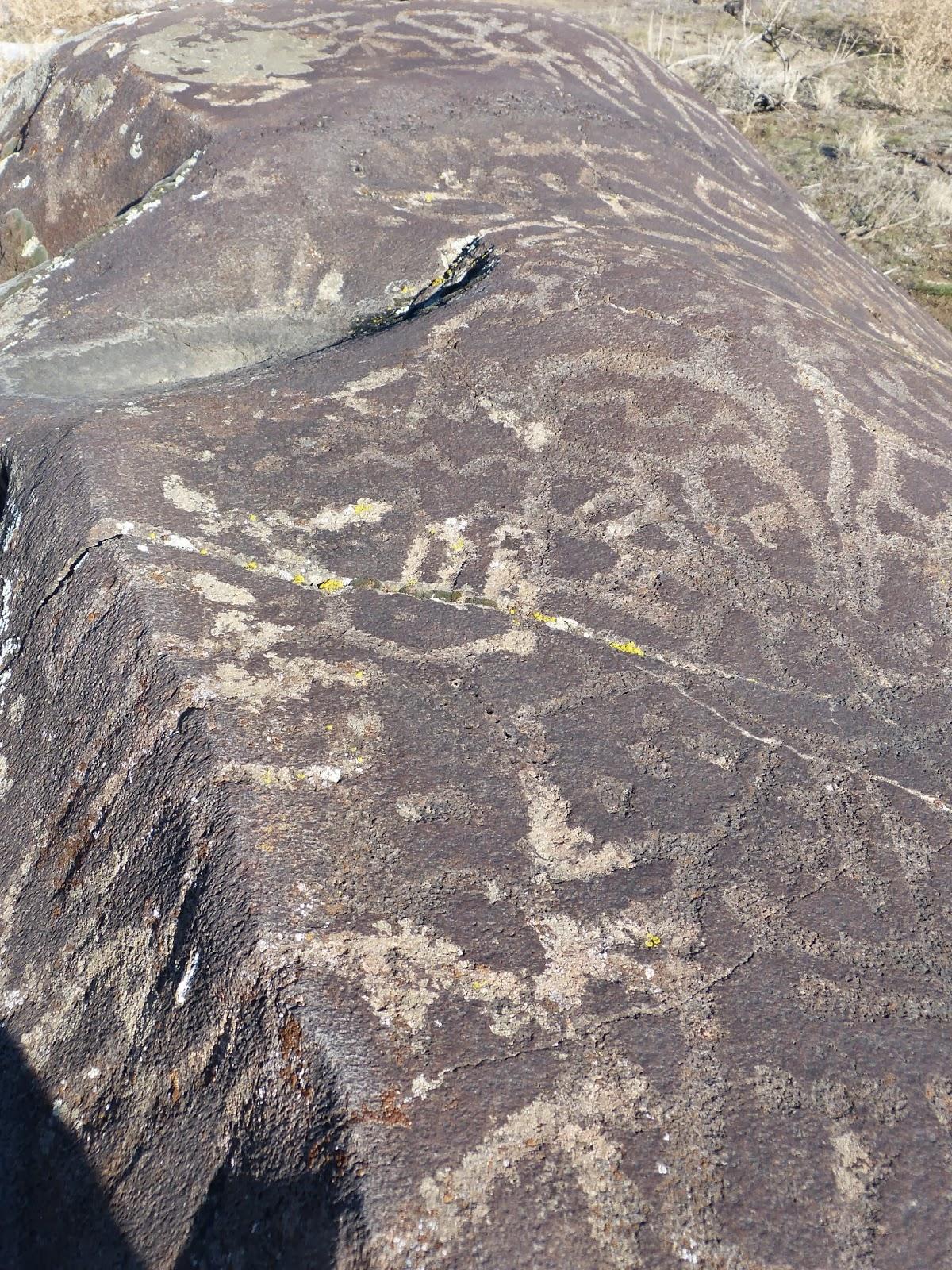 treasure seekers swan falls petroglyph hike