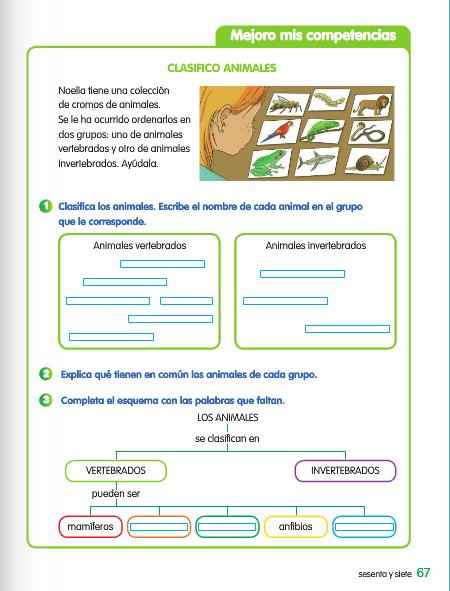 imagenes de animales vertebrados e invertebrados - [FLASH]vertebrados e invertebrados Cienciasnaturales