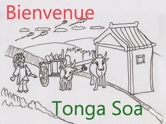Bienvenue tonga soa sur le blog de zari l'intrépide