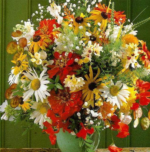 http://2.bp.blogspot.com/-JrQT1_jnKv4/VhLWfoaJIKI/AAAAAAAATd0/HTm3JcJdcQs/s1600/51788714_46084478_44163007_Flowers7web.jpg