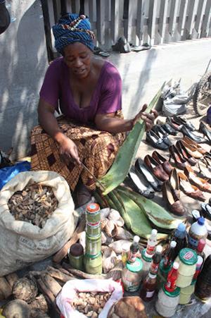Medicamentos Tradicionais em Moçambique